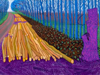 David Hockney - The Bigger Picture